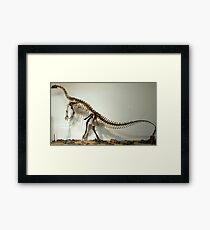 Special Riojasaurus Framed Print