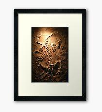 Strong Riojasaurus Framed Print