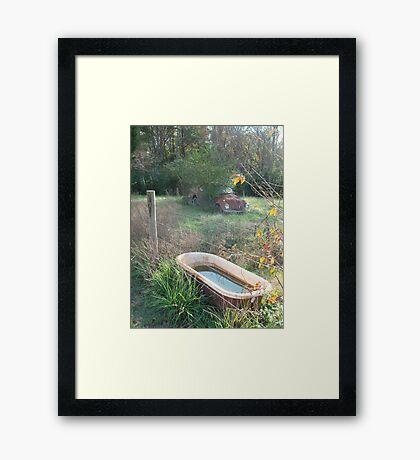 Bug , Bath & Beyond Framed Print