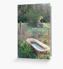Bug , Bath & Beyond Greeting Card