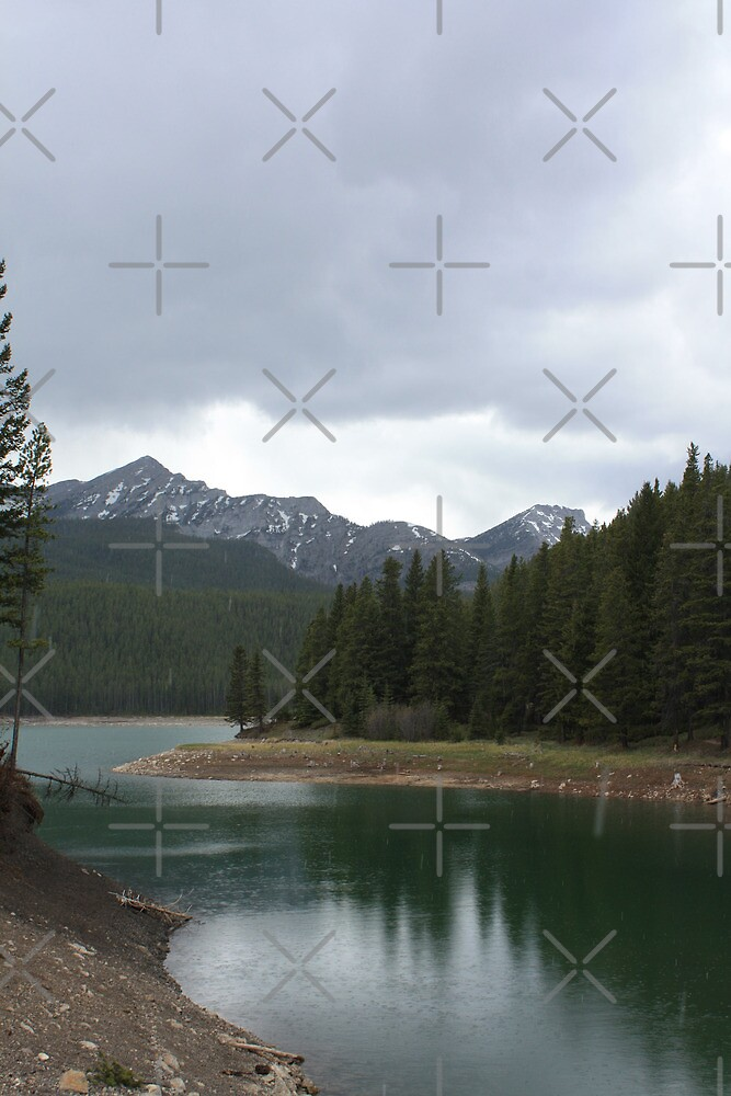 Chinook Lake in Spring by Alyce Taylor