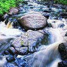 Kingsbury Creek by Angela King-Jones