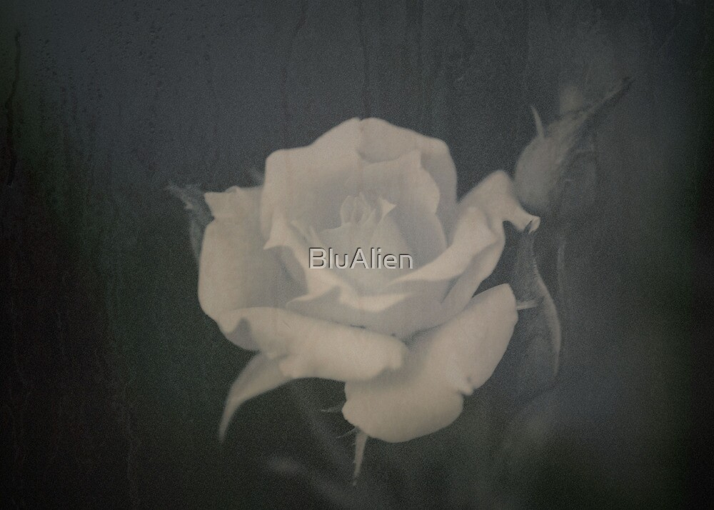 Fading Away by BluAlien