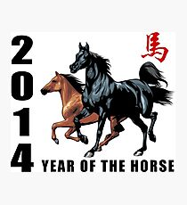 2014 Year of The Horse Photographic Print