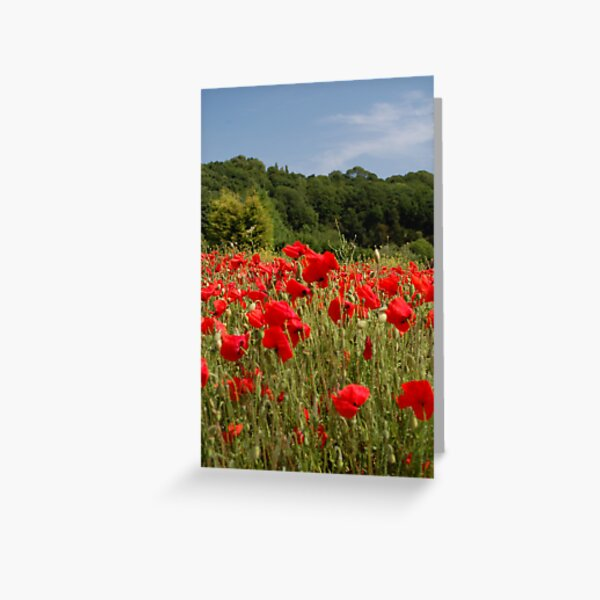 Dash of Red Greeting Card