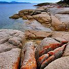 Bay of Fires, Tasmania by Ali Brown