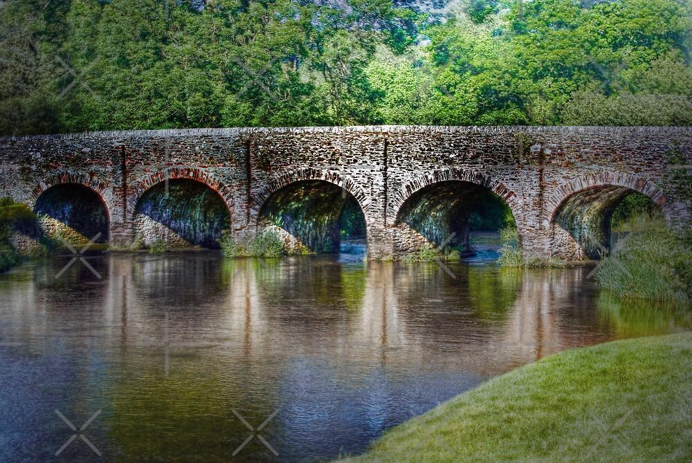 Withypool Bridge by Catherine Hamilton-Veal  ©