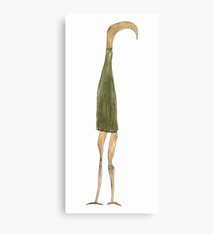 the long-snouted curtain Canvas Print