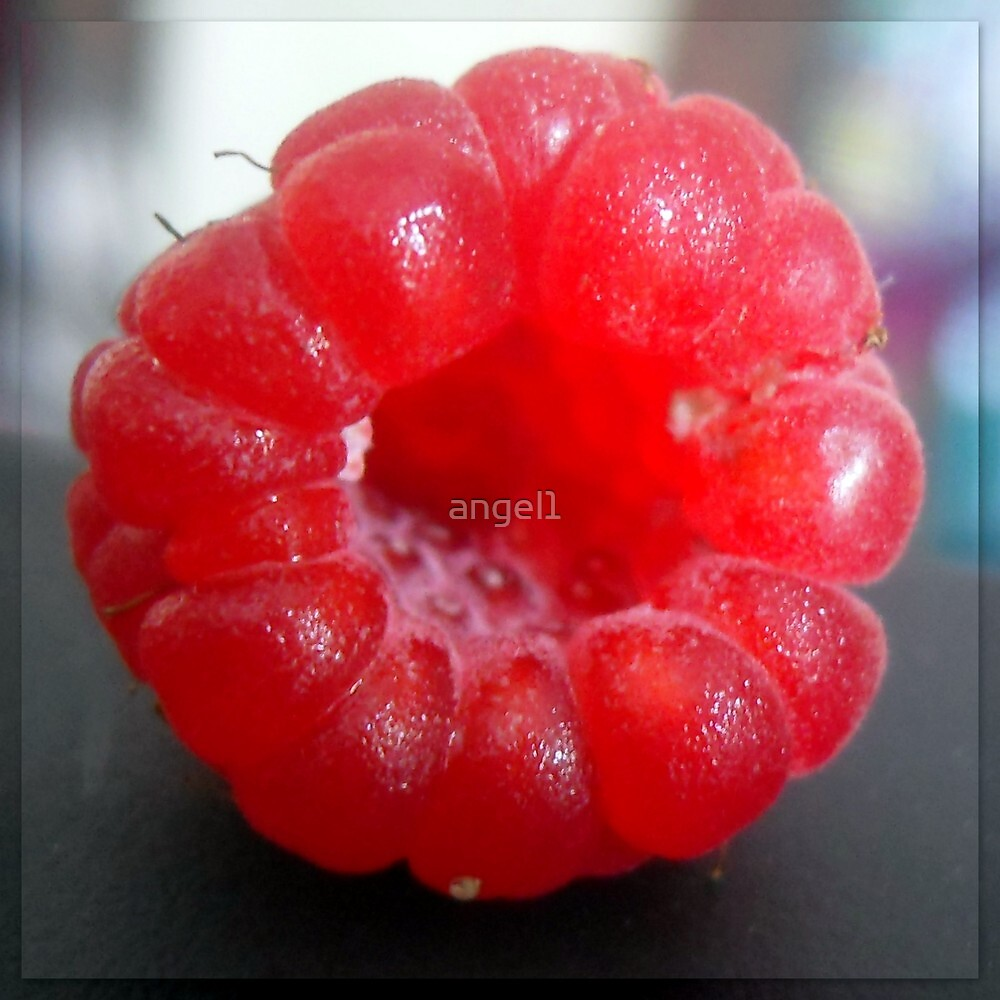 Raspberry Passion by ©The Creative  Minds