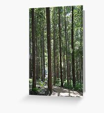 Tall And Straight Greeting Card