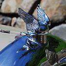 Wings... by Marjorie Wallace