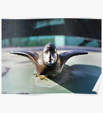 Caddy Hood Ornament Poster