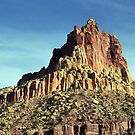Rock Mountain Summit: Capitol Reef National Park, Utah by RocklawnArts