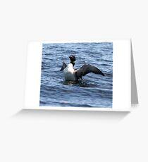 Loon 3 - Lake Muskoka Greeting Card