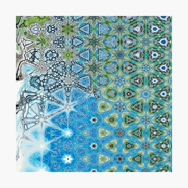 Hibernal Metamorphosis 10 Photographic Print