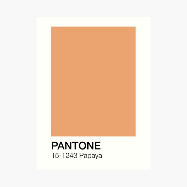 Papaya Pantone Shade  Art Print