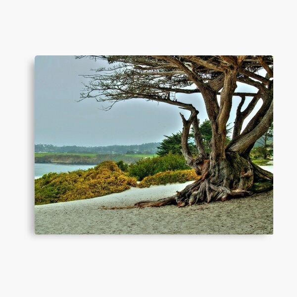 Carmel Beach II Canvas Print
