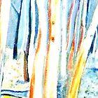 Ridge Gums , Hillend by Redviolin