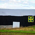 FC Barn Quilt 1 by mcstory