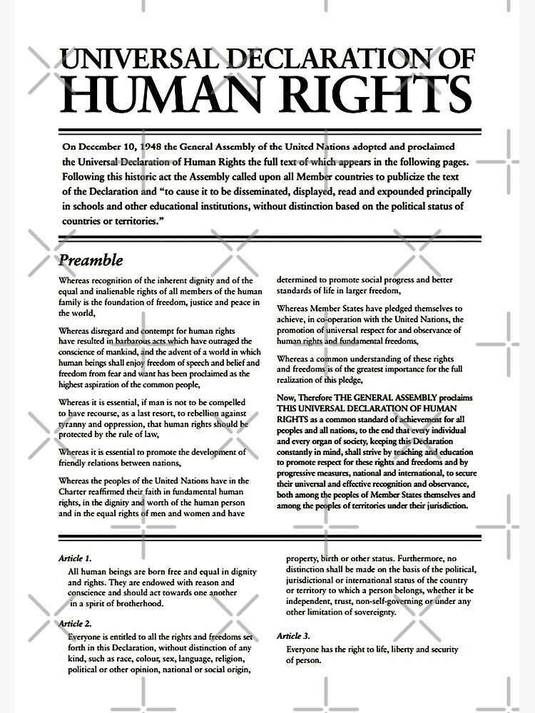 HIGH RESOLUTION The Universal Declaration of Human Rights First Page by buythebook86
