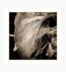Bellydance Art Print