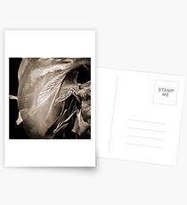 Bellydance Postcards