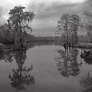 my sweet home, Louisiana by leapdaybride