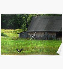 Stork is farmstead friend Poster