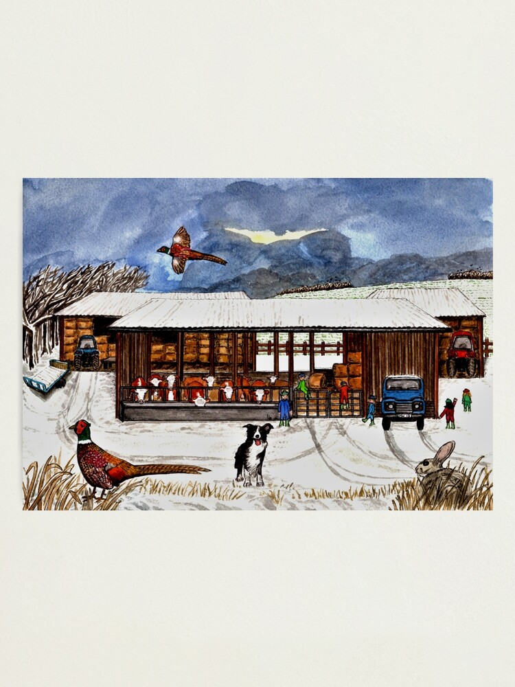 Alternate view of Winter Life - Wall Art Photographic Print