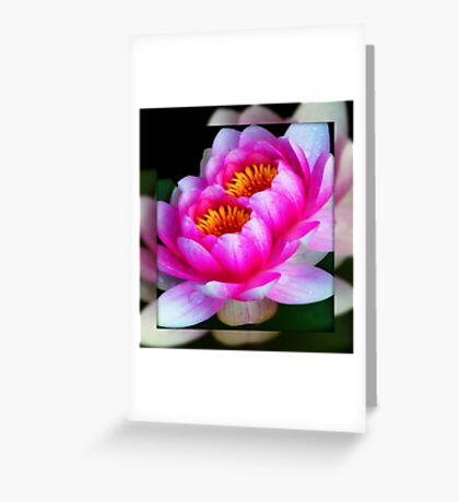God's flowers © Greeting Card