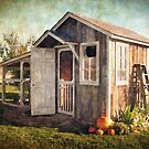 The Chicken's House by Kelley Jo