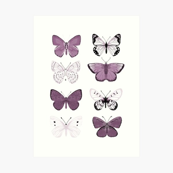 Mauve Purple Butterflies - butterfly sticker pack, butterfly sticker pack, butterflies stickers, butterfly stickers, moth art, moth Art Print