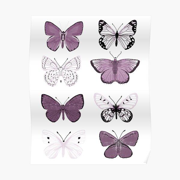 Mauve Purple Butterflies - butterfly sticker pack, butterfly sticker pack, butterflies stickers, butterfly stickers, moth art, moth Poster