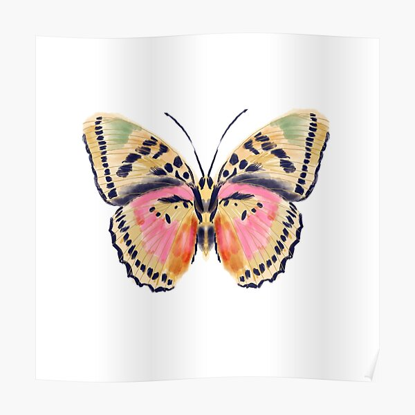 Painted butterfly, butterfly sticker, butterflies, watercolor butterfly, yellow and pink butterflies, insect art, butterfly art, andrea lauren Poster