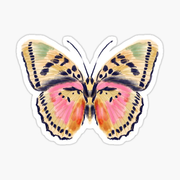 Painted butterfly, butterfly sticker, butterflies, watercolor butterfly, yellow and pink butterflies, insect art, butterfly art, andrea lauren Sticker