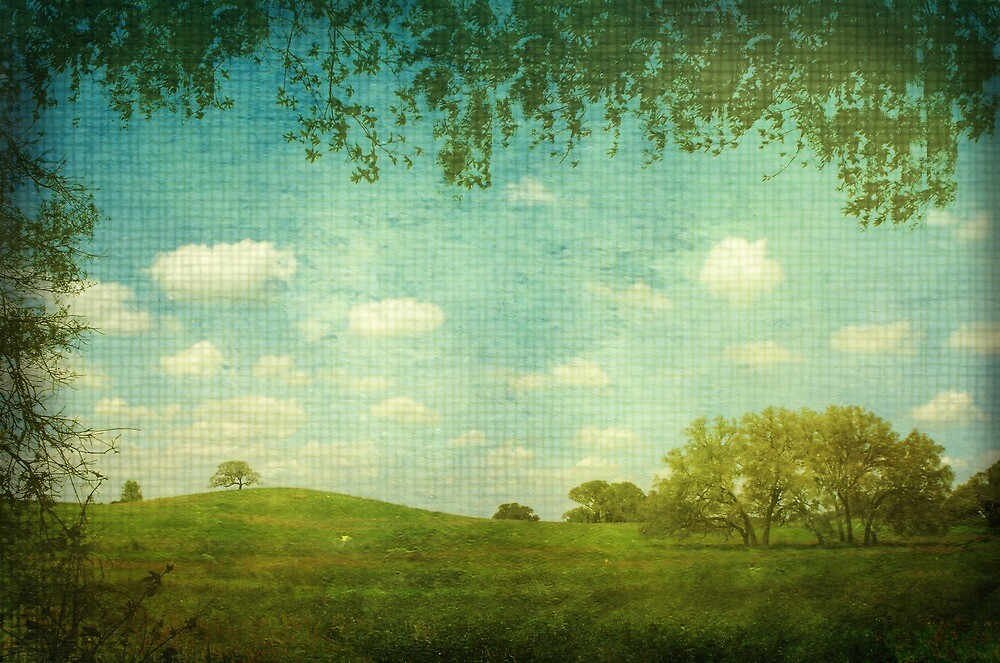 Green acres by Rebecca Morrison
