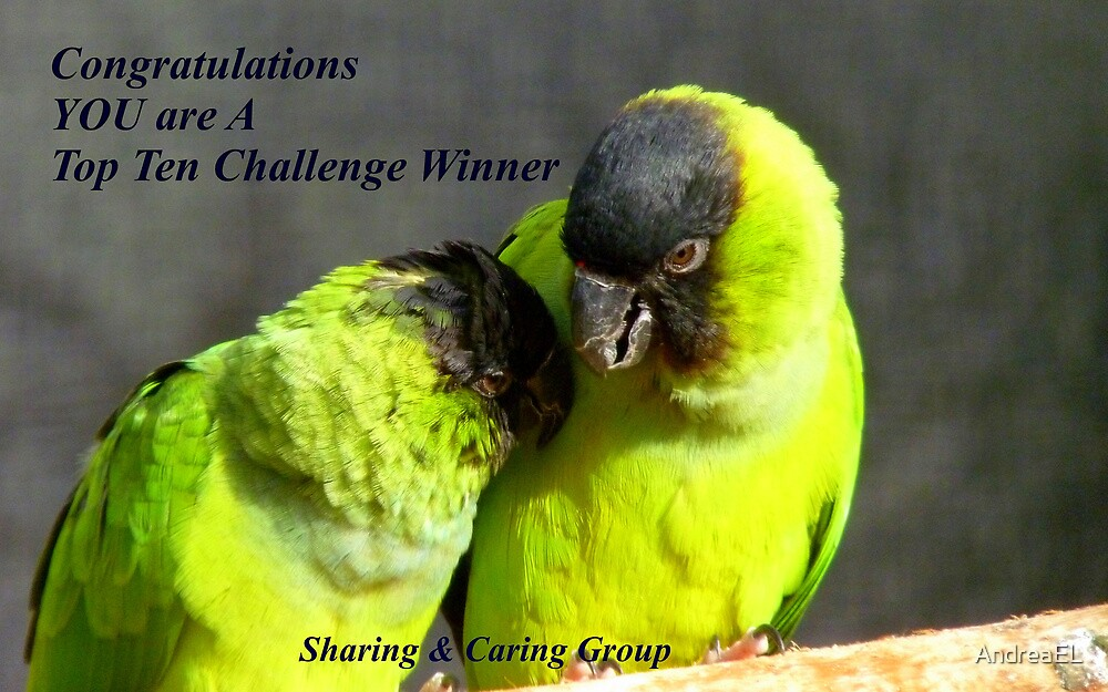 CONGRATULATIONS! - Top 10 Challenge Winner - Sharing & Caring by AndreaEL