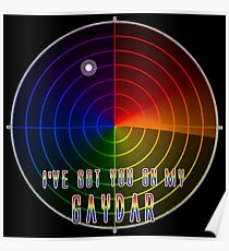 I've Got You On My Gaydar Poster