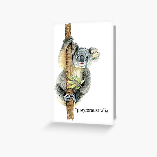 Pray for Australia Koala  Greeting Card