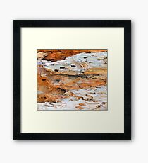 Nature Recycling Nature No. 1 Framed Print