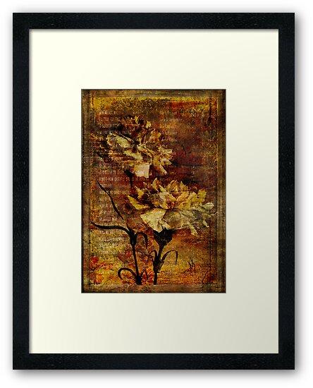 Carnation Rhapsody by Sarah Vernon