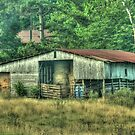 The Hay Barn by Chelei