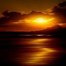 ENDLESS SUMMER SUN by RoseMarie747