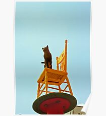Chair Art China Town Poster