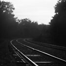 tracks by Heather Chipps