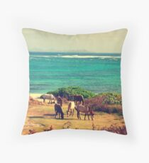 Seaside grazing - Saint Martin   Throw Pillow