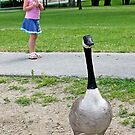 Goose by Twistedwhisker1