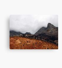 Misty mountain (Palmietberg, Cape) Canvas Print