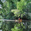Peaceful Canoeing by Ritva Ikonen
