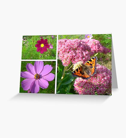 Love is like a butterfly... Greeting Card